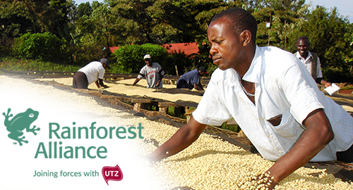 UTZ certified en Rainforest Alliance keurmerken