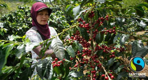 Fairtrade koffie
